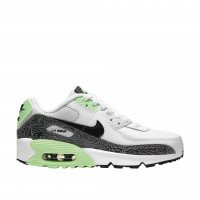 Nike Air Max 90 Kids (GS) (DH4111-100)